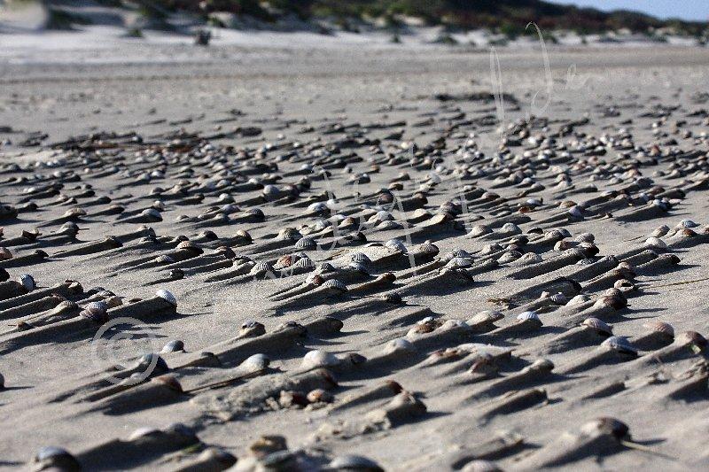 Sandverwehungen